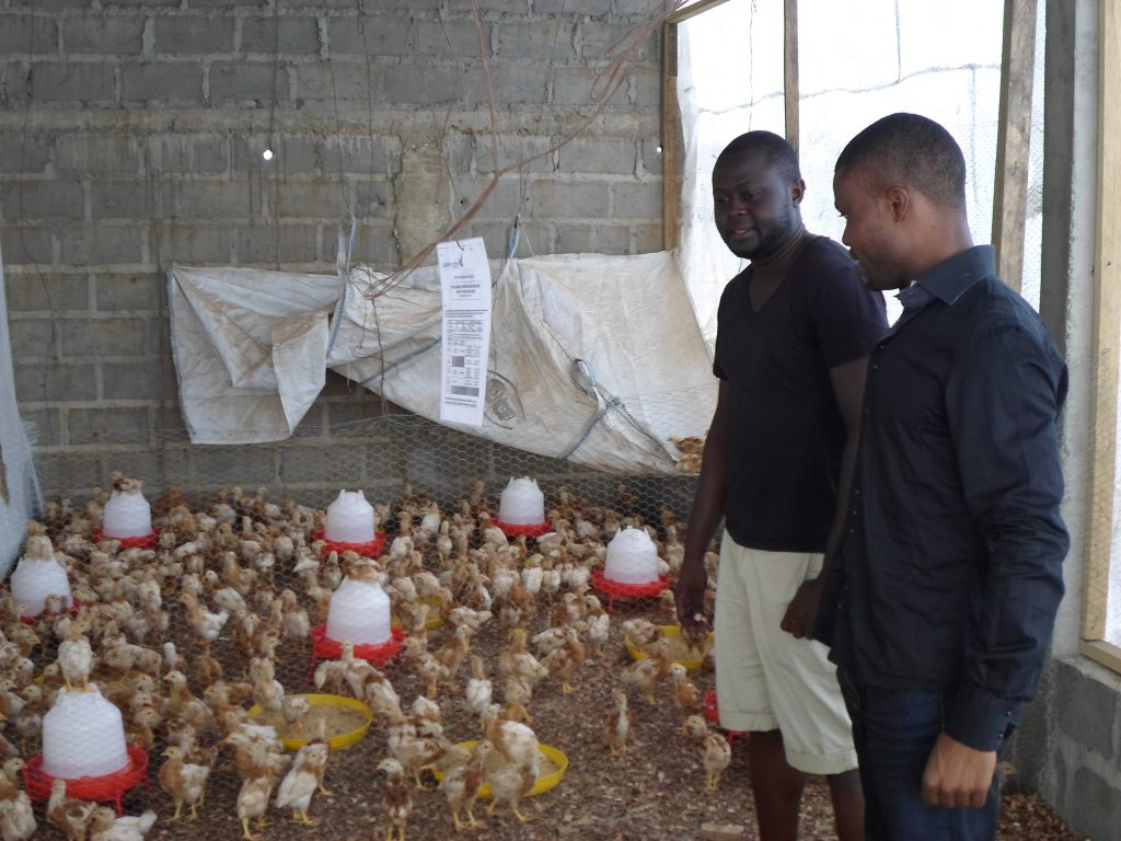 Two men standing at a poultry farm in Cameroon.